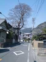 旧東海道の町並