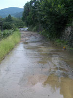 川状態の道