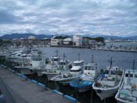 田子の浦漁港
