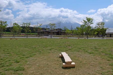 設置された木製ベンチ