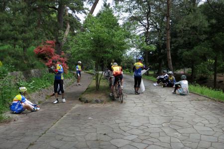 傘取峠の松並木