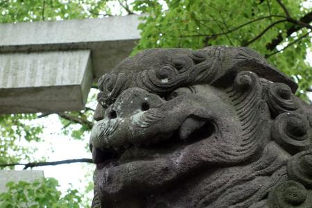浅間大社鳥居前の狛犬