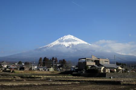 北山からの富士山