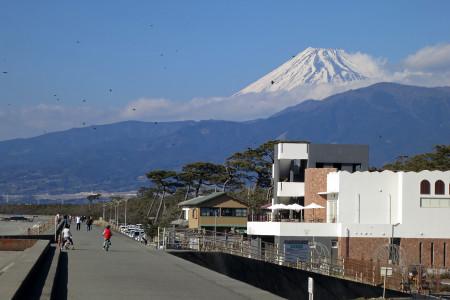 富士山を眼前に