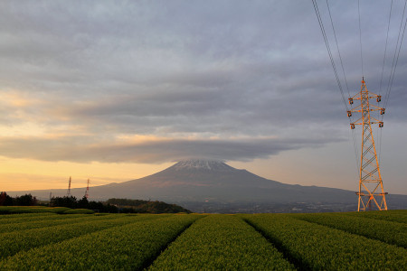 新茶と夕暮れの富士山