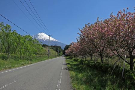 気持ちのよい青空と道
