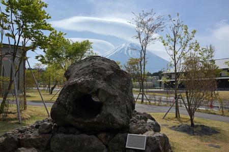 あさぎりフードパークの溶岩樹型