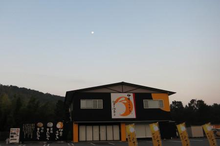 伊豆のうさぎと月