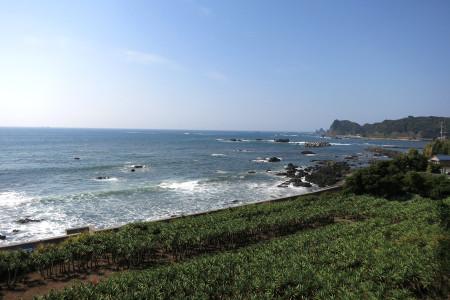 石廊崎への海岸線