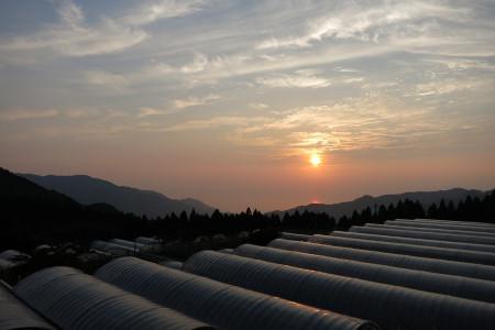 夕陽の光景