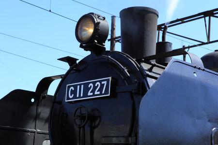 C11 227