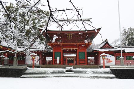 桜の枝と雪と楼門