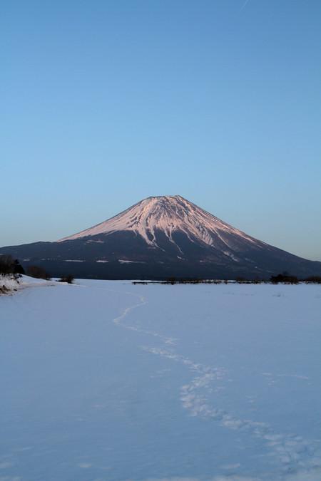 2月25日の朝霧高原からの富士山