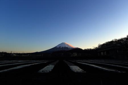 3月6日朝の富士山