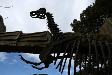 恐竜が棲む森の入口