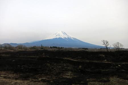 富士山と野焼きのあと