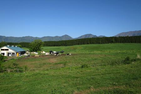 広々とした牧草地