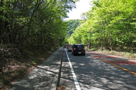 本栖湖芝桜まつりへの渋滞