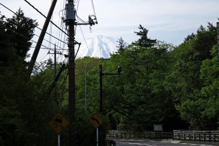 時折頭を覗かせる富士山