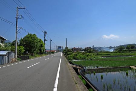 田園と富士山