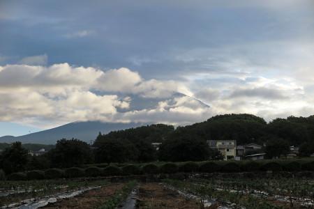 8月5日朝の富士山