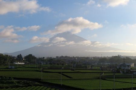 8月6日朝の富士山