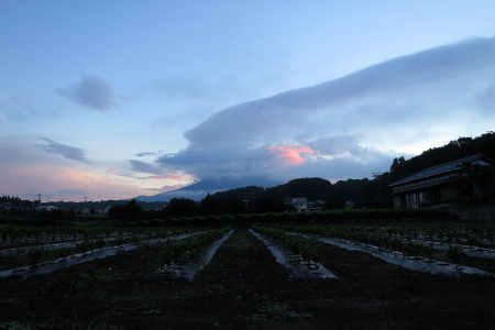 朝焼け雲と富士山