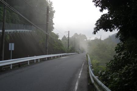 霧が道路を横切る