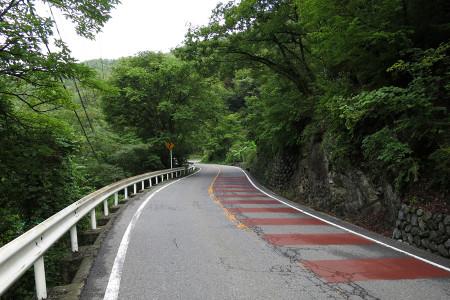 道は山道に