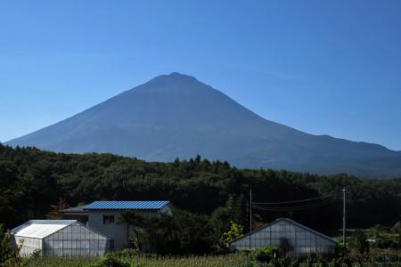 鳴沢付近からの富士山