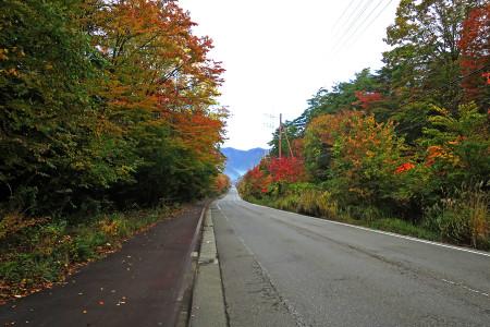 国道139号西湖付近の紅葉