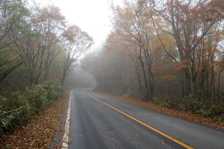 霧の中を下る