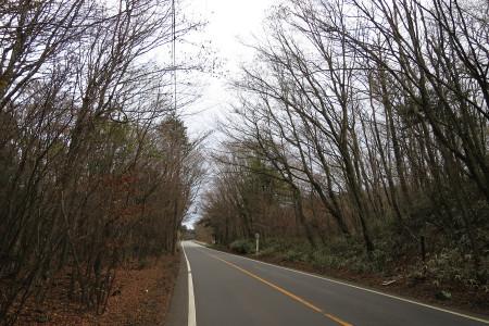 県道71号の光景