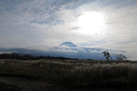 県境付近からの富士山