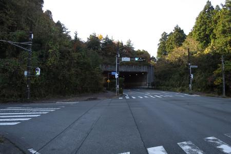 ここから箱根への上り