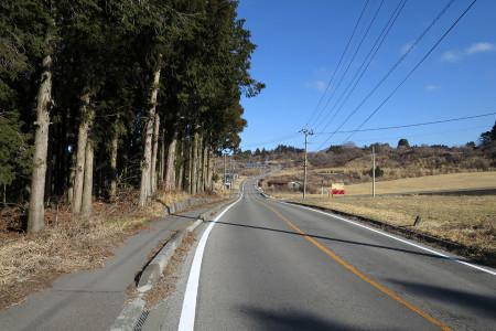 富士ヶ嶺への道
