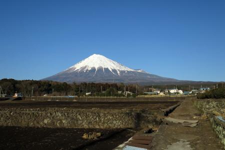 見慣れた富士山