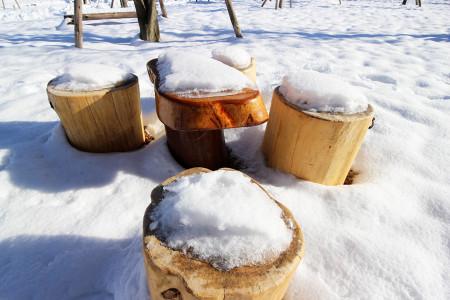 あさぎりフードパーク内の雪