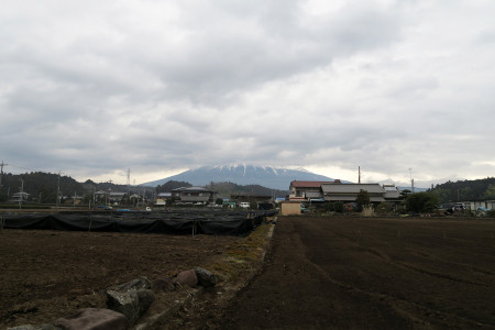 富士山の下半分