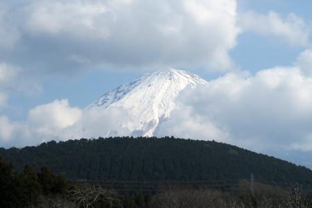 顔を覗かせた富士山