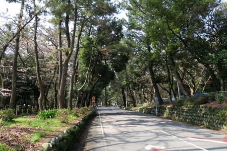 千本浜公園付近