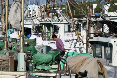 しらす漁の漁船