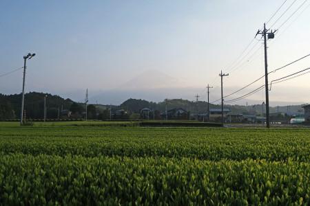 富士山は霞みの中