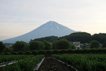 5月18日朝の富士山