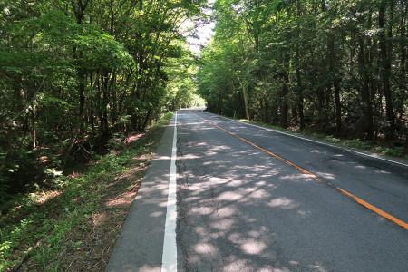 鳴沢への道
