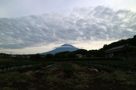 6月8日朝の富士山