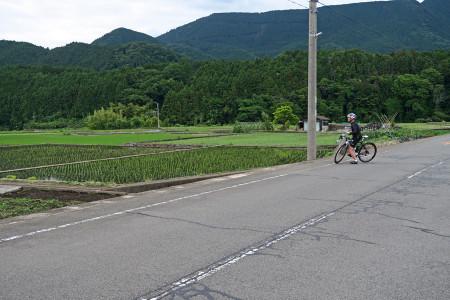 水田の光景