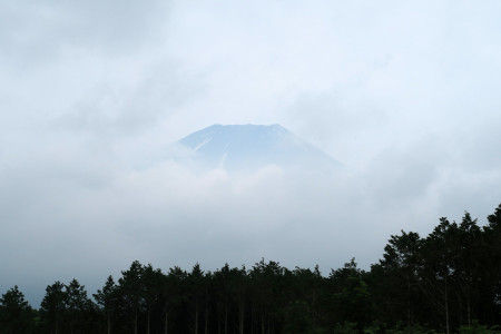 この時だけの富士山