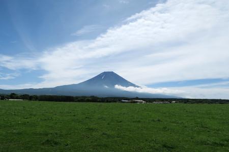 朝霧高原の牧草地からの富士山