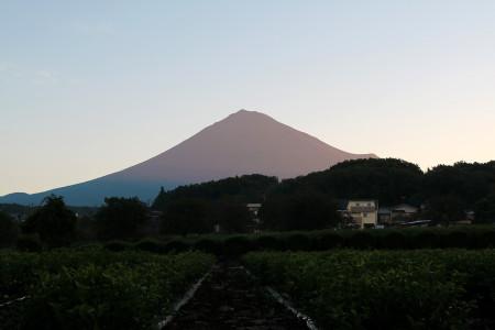 9月19日朝の富士山